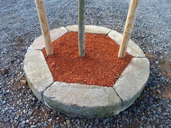 rond tour arbre pierre granit