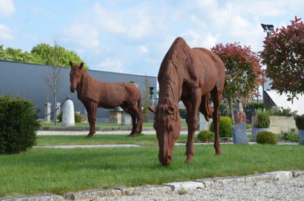 cheval fonte (13)