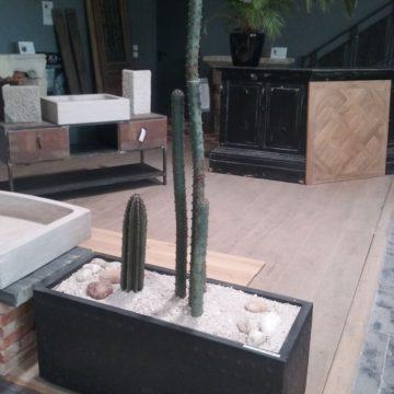 Jardinière en métal de cactus métal