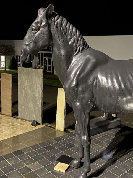 cheval noir tompe l'oeil