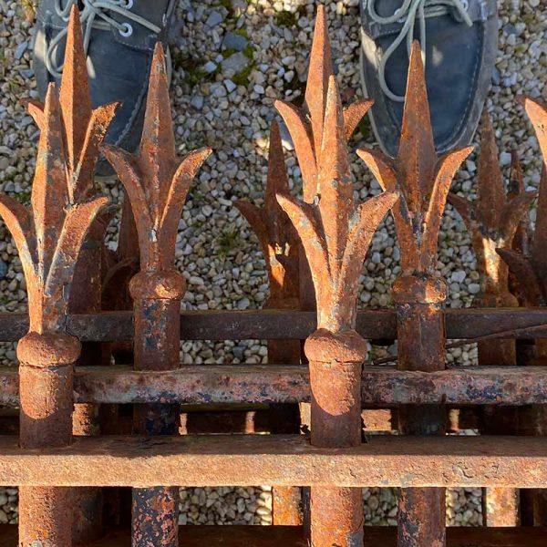 Pointes en forme de fer de lance